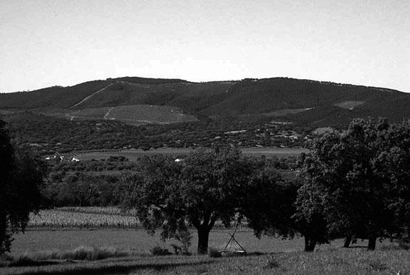 https://lombodoferreiro.pt/wp-content/uploads/2019/02/Vista-geral-do-povoado-do-Castelo-ou-Castelo-Velho-da-Serra-dOssa.jpg